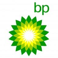 BP (8)