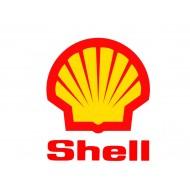 Shell (26)